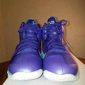 LeBron Hornets 9 size 10