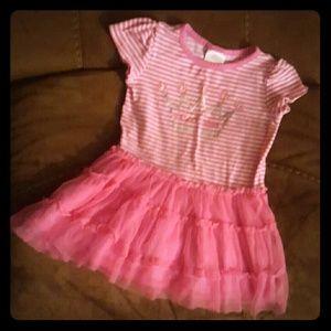 Pink princess tiara tutu dress