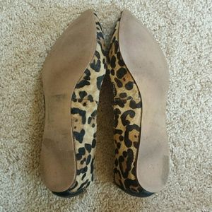Steve Madden Shoes - Leopard print calf hair flats