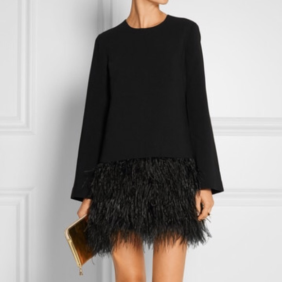 Feather Dress with Sleeves