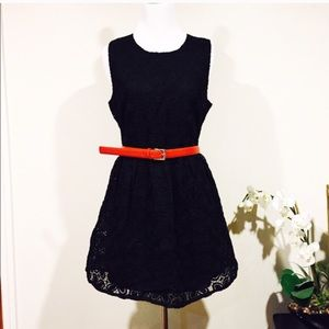 NWT LBD lace
