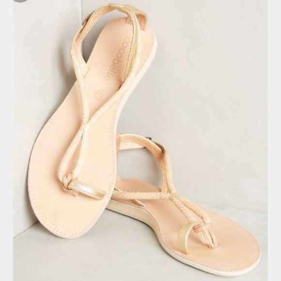 762957a8180993 Cocobelle Elsie Taupe Thong Sandal