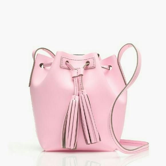 J. Crew Pink Mini Bucket Bag Leather