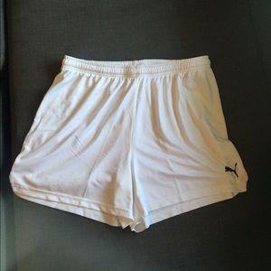 Puma Pants - Puma dry cell shorts