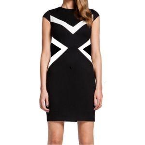 Cynthia Steffe Dresses & Skirts - Cynthia Steffe black and white dress