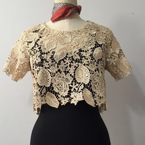 Gold Lace cropped top