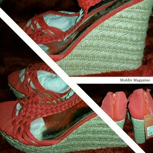 Beautiful Coral wedges