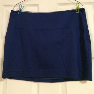 NWT Blue lined mini skirt