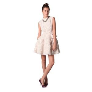 camilla & marc Dresses & Skirts - Camilla & Marc Dash Dress Ivory with Maroon Spots