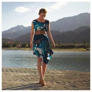 Anthropologie Magnified Corolla Dress