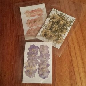 Other - Set of 3 packs of Dried Flowers