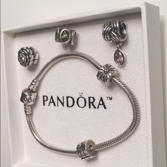Pandora Bracelet With 2 Clips and 3 Charms