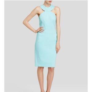 NWT Cynthia Steffe Dress sz 6
