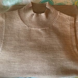 Ann Taylor Beige Knit Top