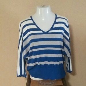 Ellen Tracy Blue Silver White Striped V-Neck Top