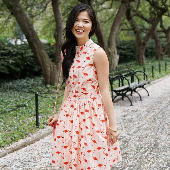 Chicwish Dresses - Pink and Coral Flamingo Print Dress