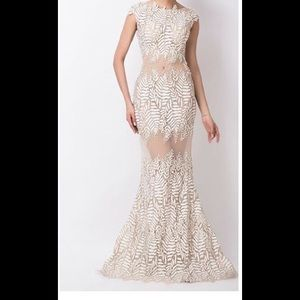 Lace/Mesh Evening Gown