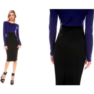 Dresses & Skirts - Stanzino Long Sleeve Colorblock Dress in Navy