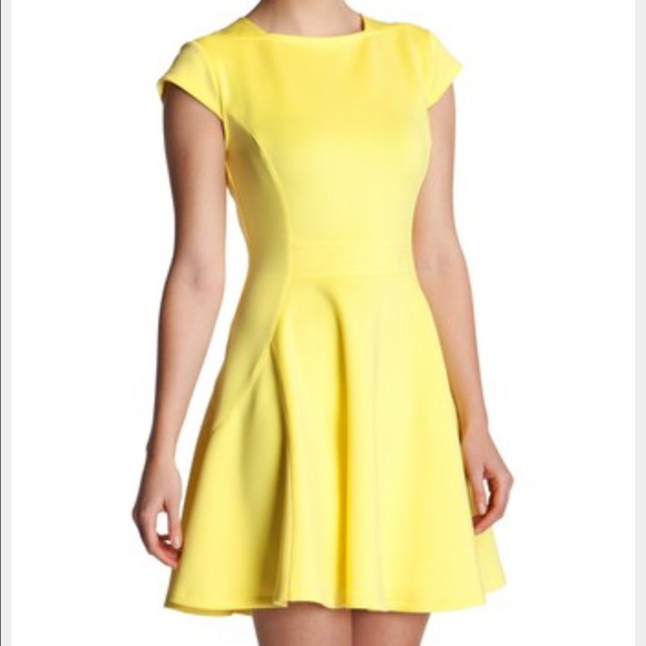 81f44fe697 Ted Baker Tezz Bright Yellow Skater Dress NWT Sz 2