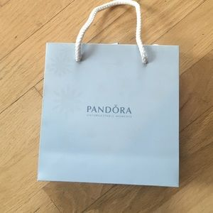 RARE SEASONAL Pandora bag