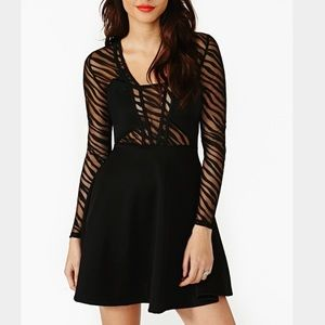 Dresses & Skirts - 💥Animal Instincts Skater Dress💥From NASTY GAL