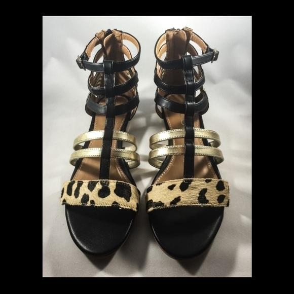 75 aldo shoes new aldo cheetah black and gold