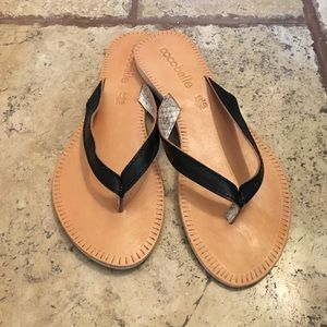 Cocobelle Shoes - Cocobelle Asli Black Thong Sandal