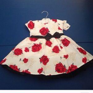 Other - elegant baby girl dress