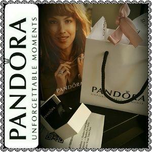 Pandora Handbags - Pandora Bundles