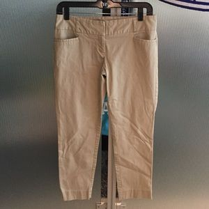 The Limited Pants - The Limited Khaki-Colored Pants