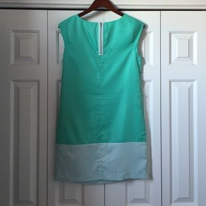 The limited color block dress