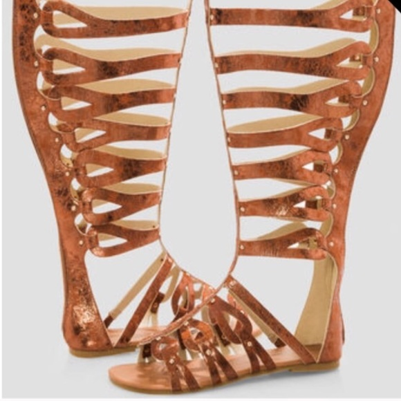 233a4f05855 Ashley Stewart Shoes - Bronze knee high gladiator sandals