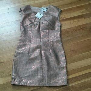 Ladakh Dresses & Skirts - Fabulous LADAKH Dress & Bronze*Size 2*New!