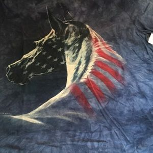Image result for July 4th horses