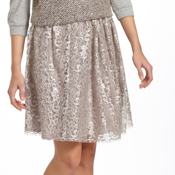 260d7b1ed Anthropologie Skirts | Metallic Tulle Skirt Hd In Paris 2 | Poshmark