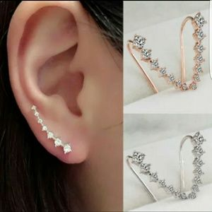 Jewelry - New Silvertone studded earrings
