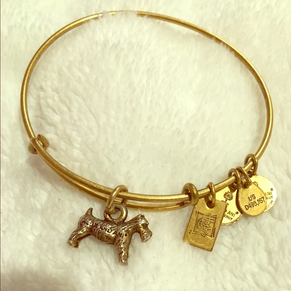 Jewelry - Gold Alex and Ani dog bangle