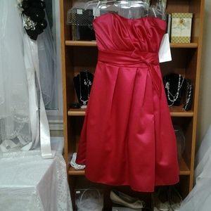 Special occasion / bridesmaid dresse