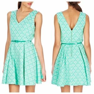 REDUCED 🎉 Mint Jacquard Skater Dress