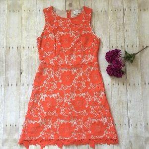 ECI Dresses & Skirts - orange floral overlay dress. nwot