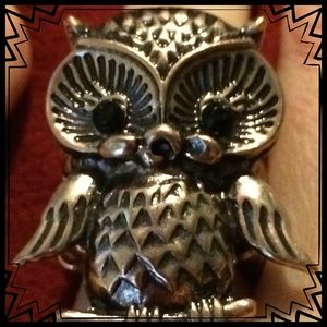 Jewelry - 💖NEW ITEM: Owl Stmt. Ring
