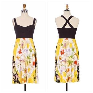Anthropologie Watergarden Dress