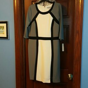 Shelby and Palmer  Dresses & Skirts - Bnwt Shelby and Palmer color block dress