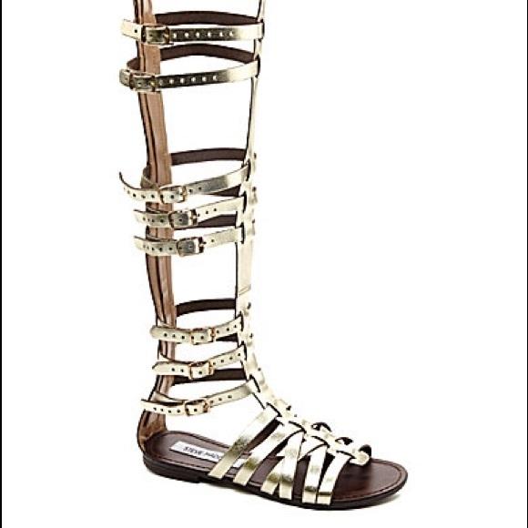 5de1d7a66ff Steve Madden Sparta Gladiator Sandals. M 57616fc1713fdef80b07da0a