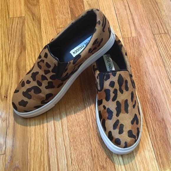 cbc1f5705ce Steve Madden Eccentric Leopard Sneaker!