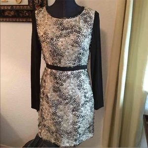 Cynthia Steffe Dresses & Skirts - Cynthia Steffe Dress