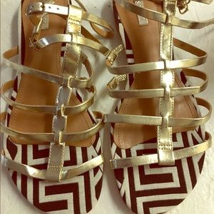 Brand new Schutz gold gladiator sandal