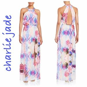 Charlie Jade Dresses & Skirts - Charlie Jade Kaleidoscope Floral Silk Maxi Dress