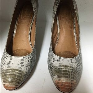 Corso Como Shoes - ♦️Gray Snakeskin pump