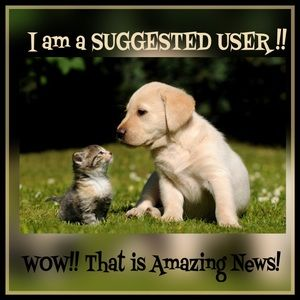 Suggested User Other - 🙀 SUGGESTED USER 🙀